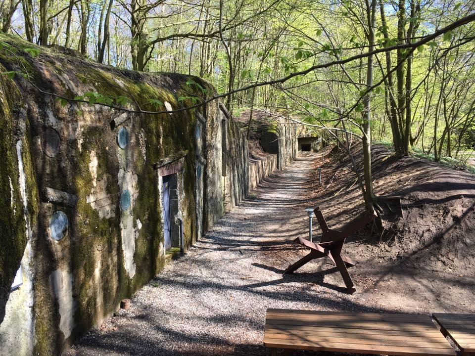 Bunkervandring i Skanderborg Dyrehave